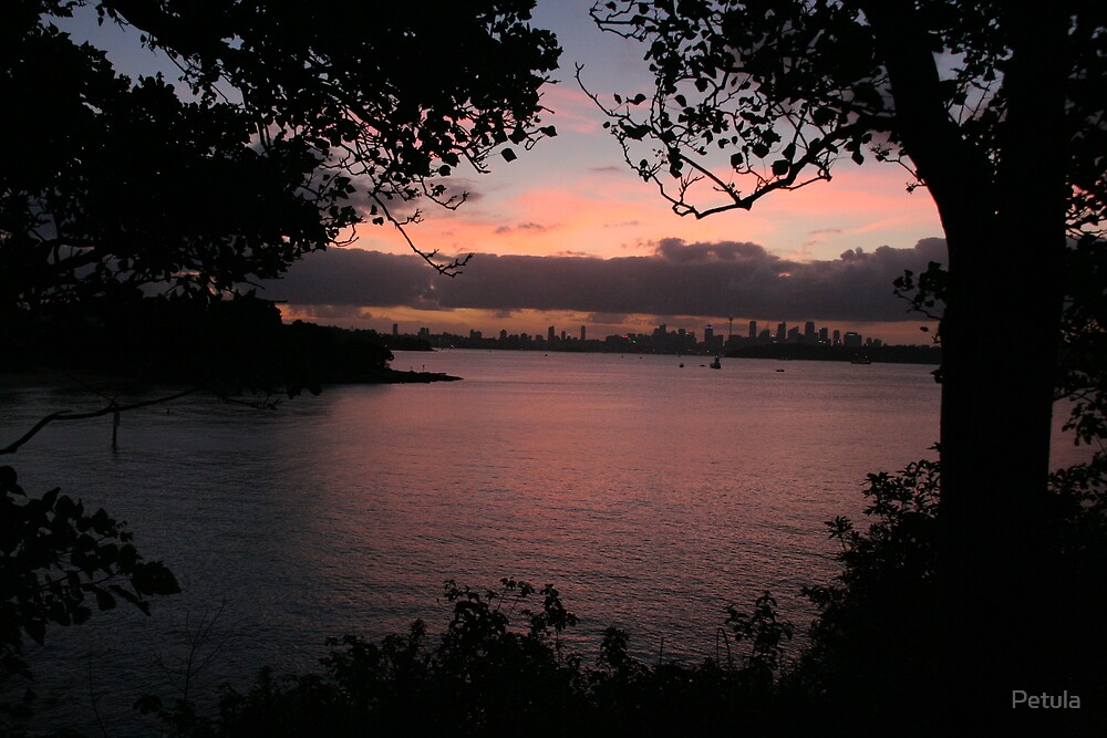 Sydney - sunset 03 by Petula
