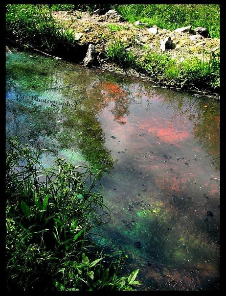 Chemical filled lake by Melissa  Carroll