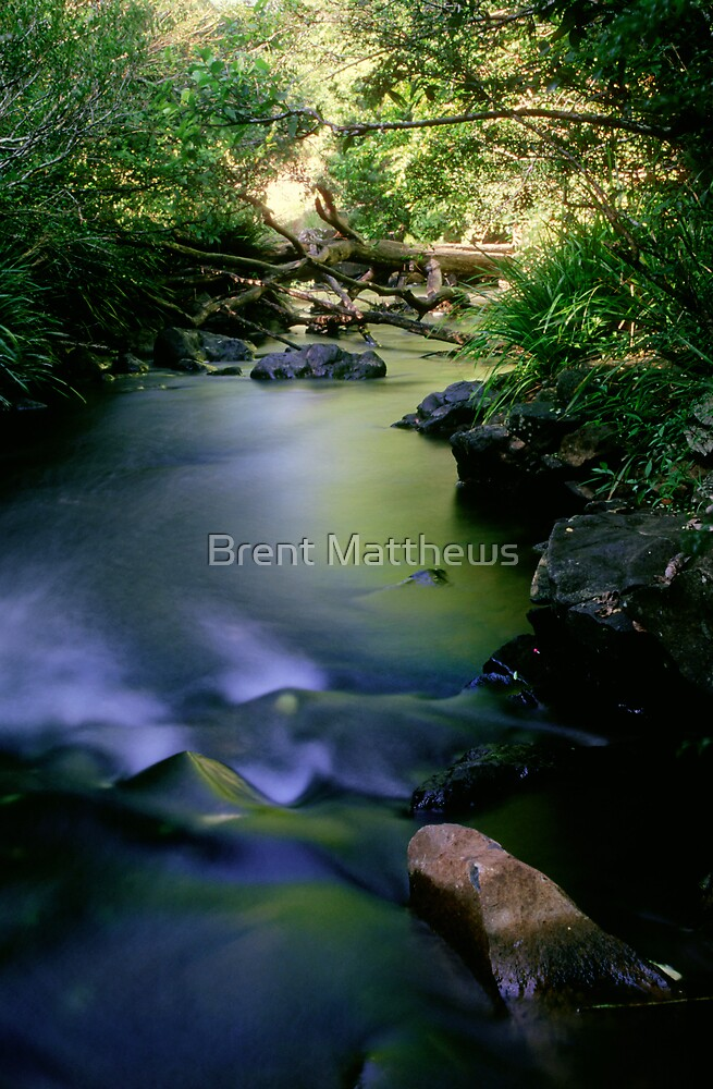 Flowing away by Brent Matthews