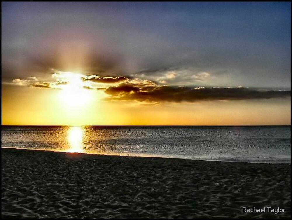 Golden Sunset by Rachael Taylor