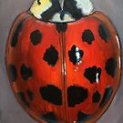 Lady Bug 2 by Glenda Jones