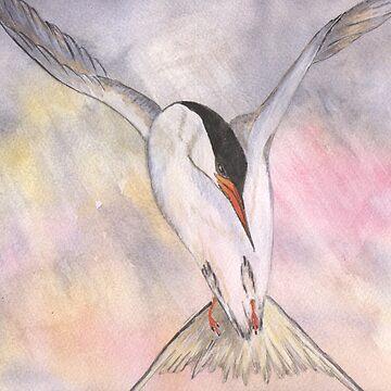 Tern in Flight by noohoo