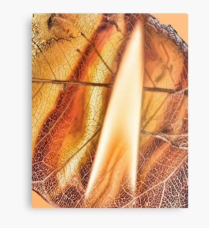 Risen from Ashes Metal Print