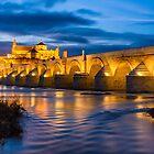Córdobas Roman Bridge and Mosque at night 1 by Ralph Goldsmith