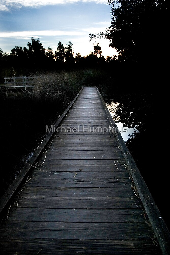 Board Walk on the Wetlands by Michael Humphrys