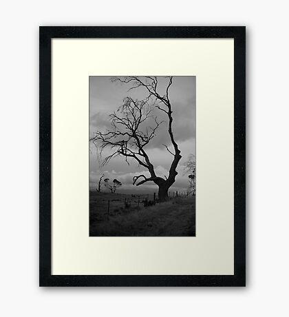 against sky Framed Print