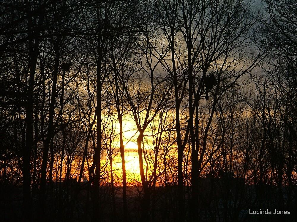 SunRise 3 by Lucinda Jones