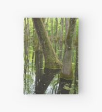 Cypress Swamp Hardcover Journal