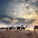 RUSH HOUR by asissanyal
