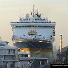 Princess II docked in Sydney Harbour by alanlowney