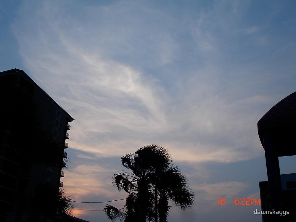 sun set by dawnskaggs