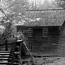 Mingus Mill VII by Gary L   Suddath