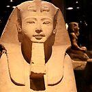 The Sphinx by annalisa bianchetti