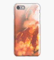 autumn leaves with sun flare iPhone Case/Skin