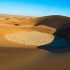 Shadows of The Namib by Richard Shakenovsky