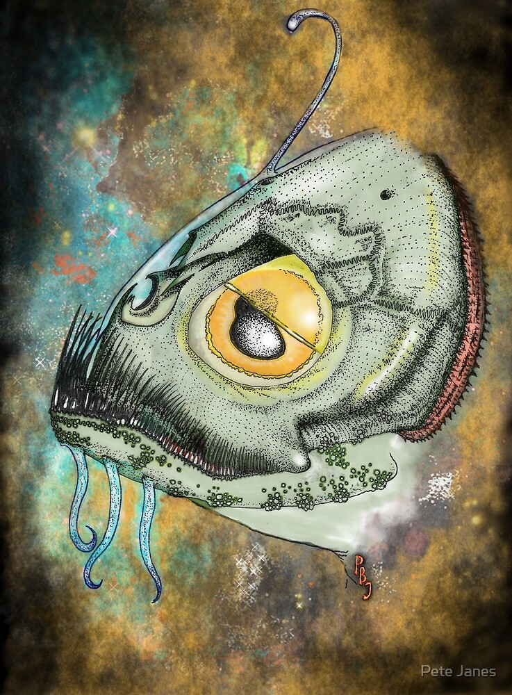 The Innsmouth Look by Pete Janes