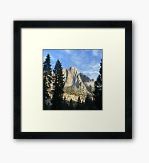 Behind the tree Framed Print