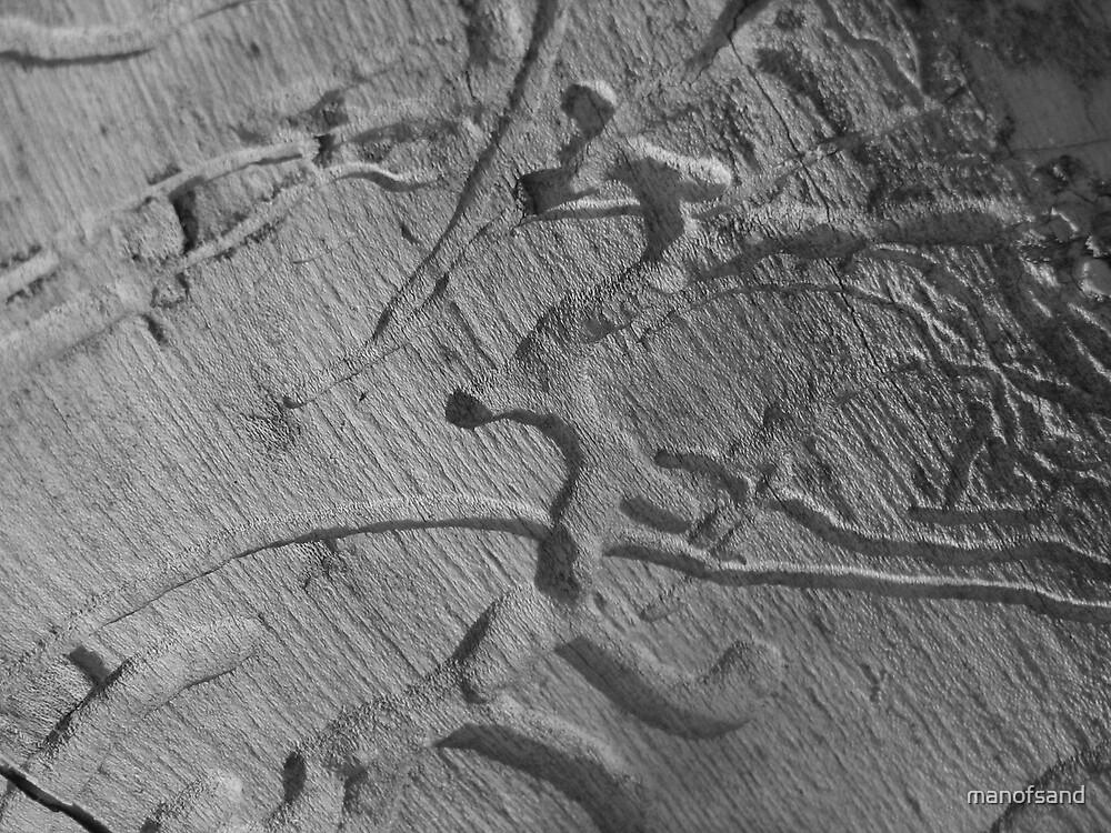 rotten bark by manofsand
