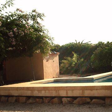 Villa  by frederico02