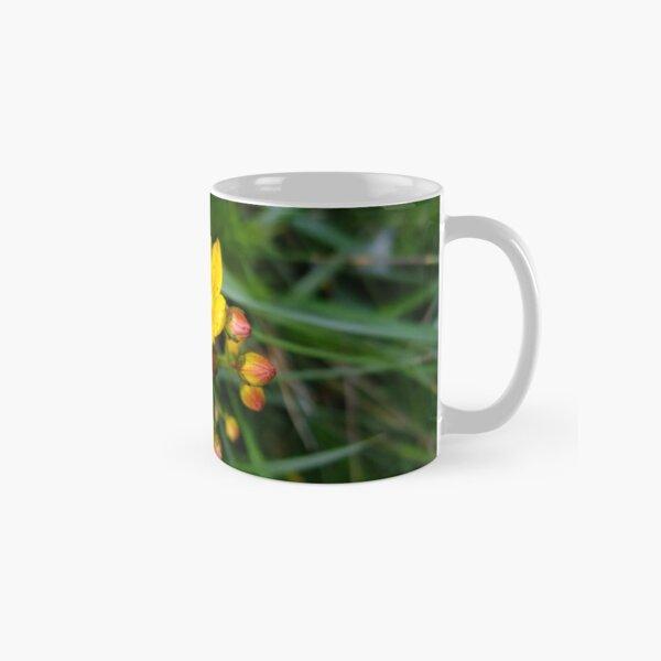 Slender St John's Wort Classic Mug