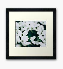 White elegant floral Framed Print