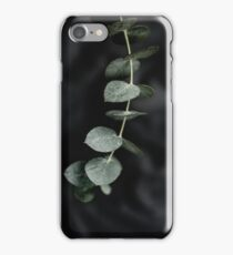 Night garden vine iPhone Case/Skin