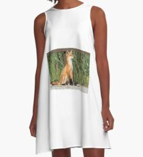 Foxing Around A-Line Dress