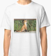Foxing Around Classic T-Shirt