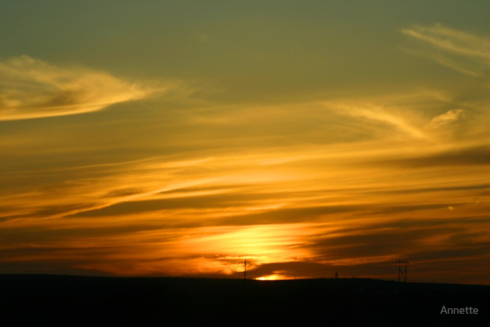 West Texas Sunset by Annette