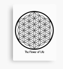 Sacred Geometry - The flower of Life Canvas Print