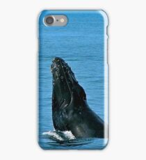 Whales In Prince William Sound iPhone Case/Skin