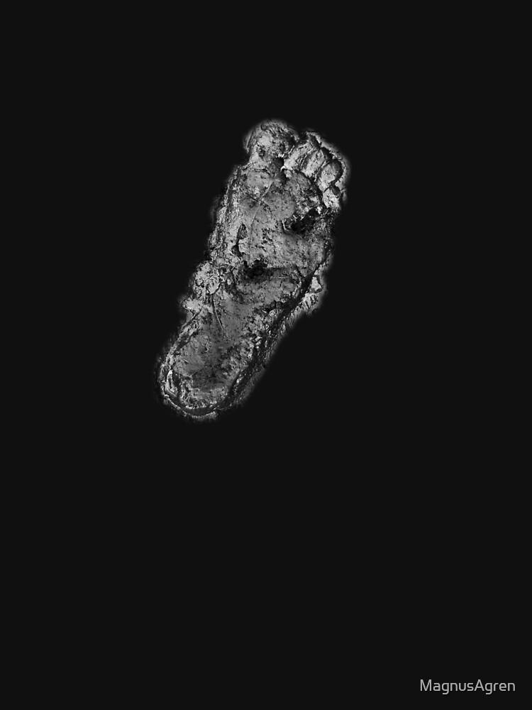 Footprint by MagnusAgren