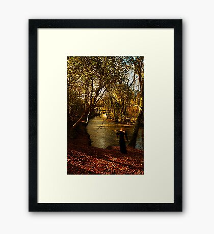 Invitation To The Thirsty Framed Print