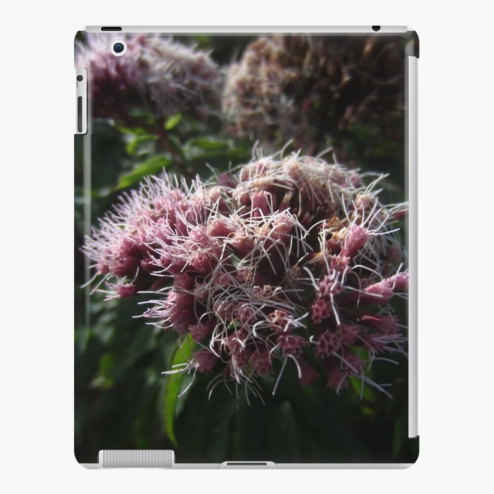 Hemp agrimony iPad Case & Skin