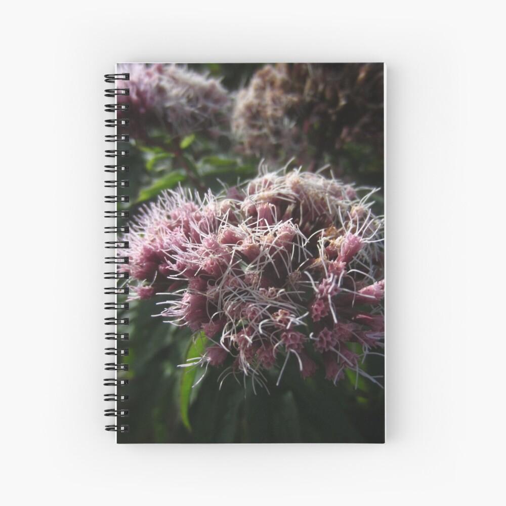 Hemp agrimony Spiral Notebook