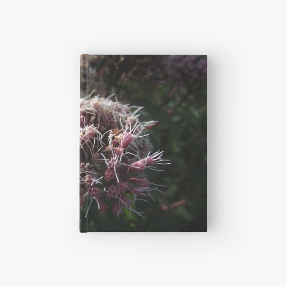 Hemp agrimony Hardcover Journal