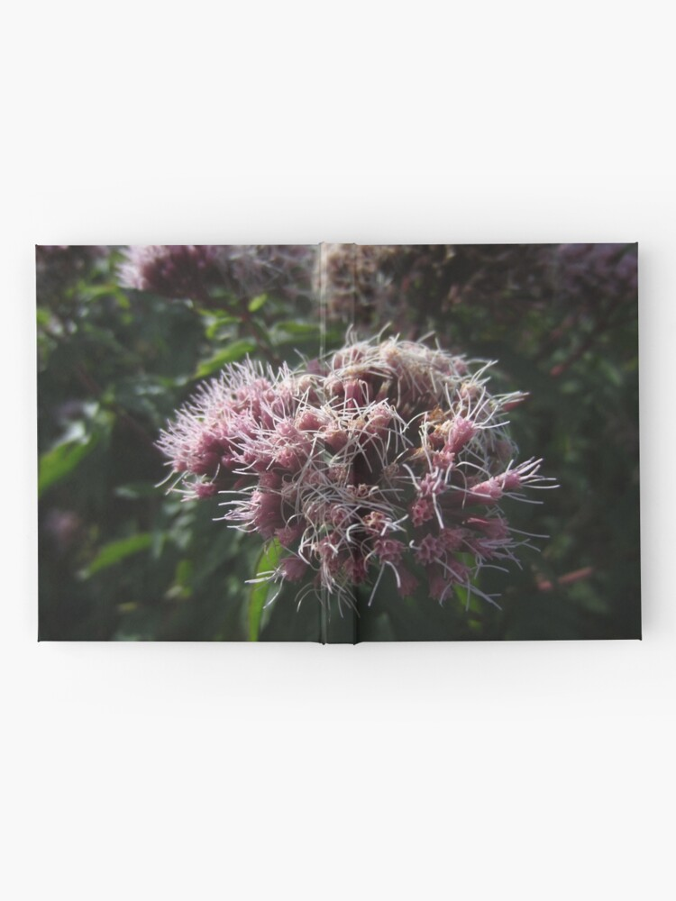 Alternate view of Hemp agrimony Hardcover Journal