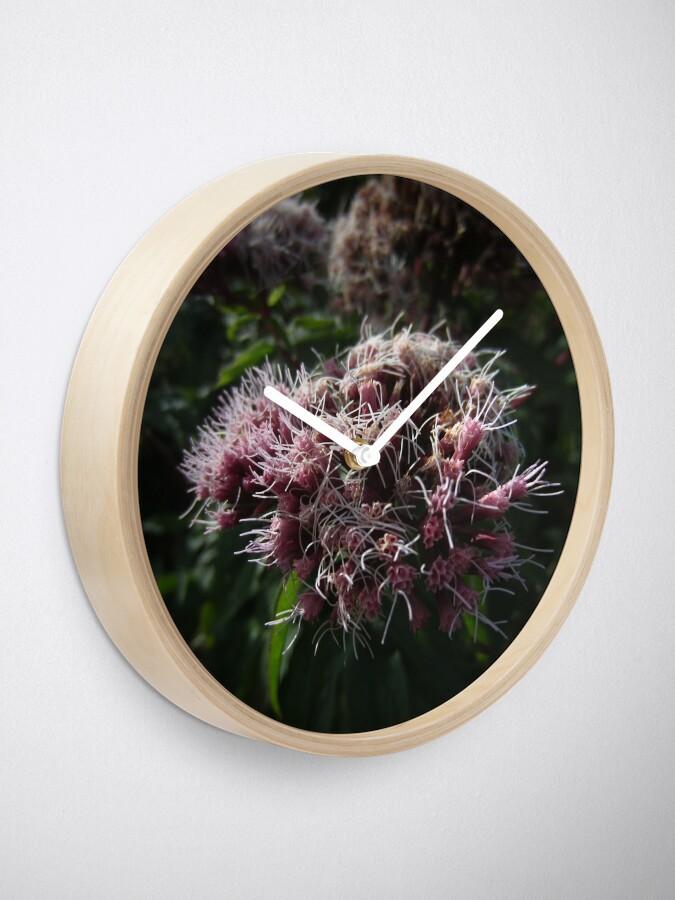 Alternate view of Hemp agrimony Clock