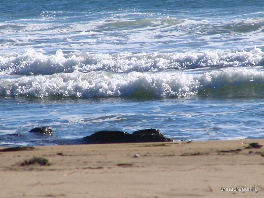 Shore Crashing by brinadragonfly