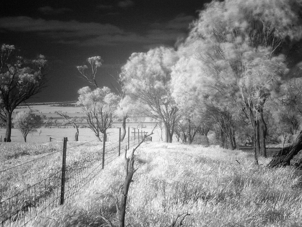 Dreamscape (IR) by Craig Shillington