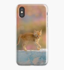 Cute Funny Drolly Ginger Cat Kitten iPhone Case
