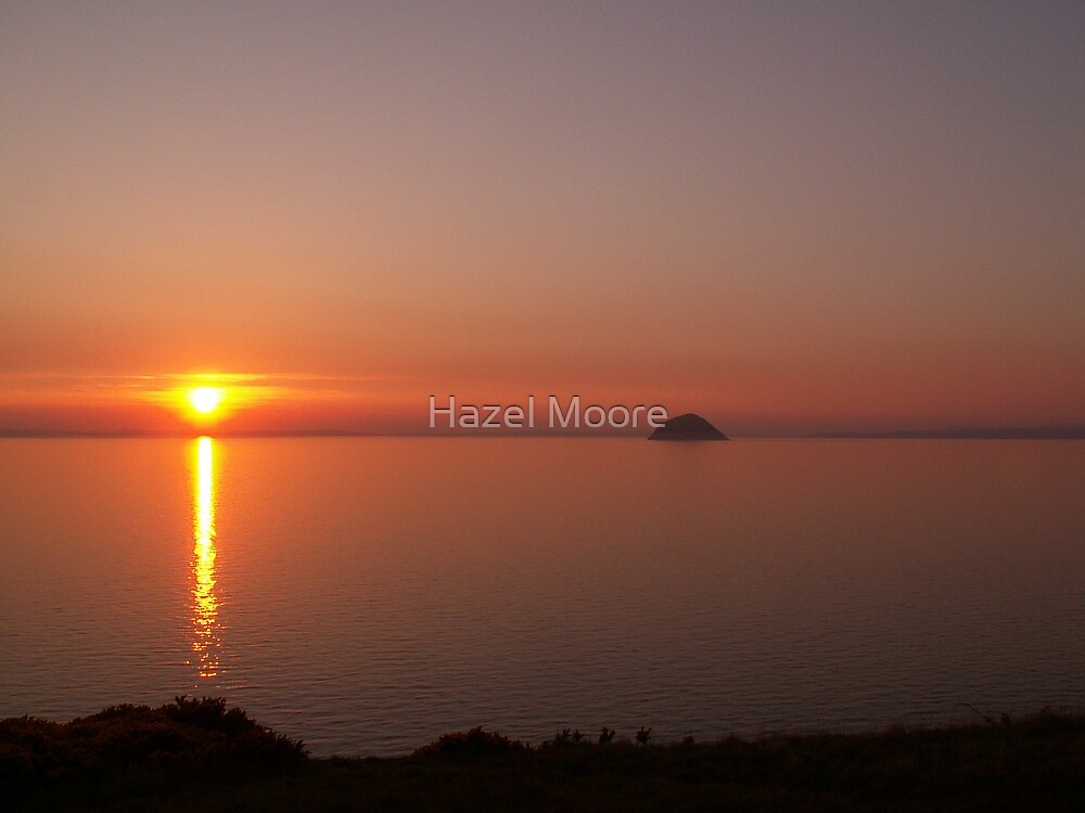 Summer Sunset by Hazel Moore