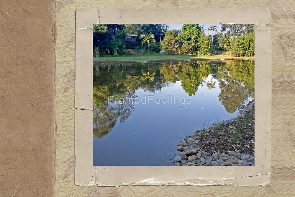 Pond Reflection by FramedFeelings