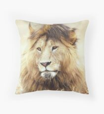 I Know I am Handsome...You Don't need to tell me 2 Throw Pillow