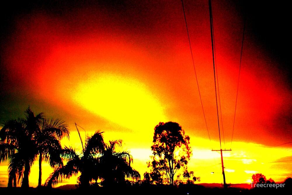 Sunset by Treecreeper
