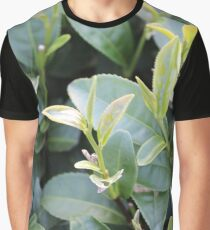 Tea leaf Graphic T-Shirt