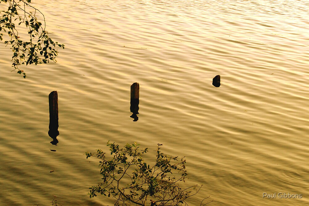 On Golden Pond by spottydog06