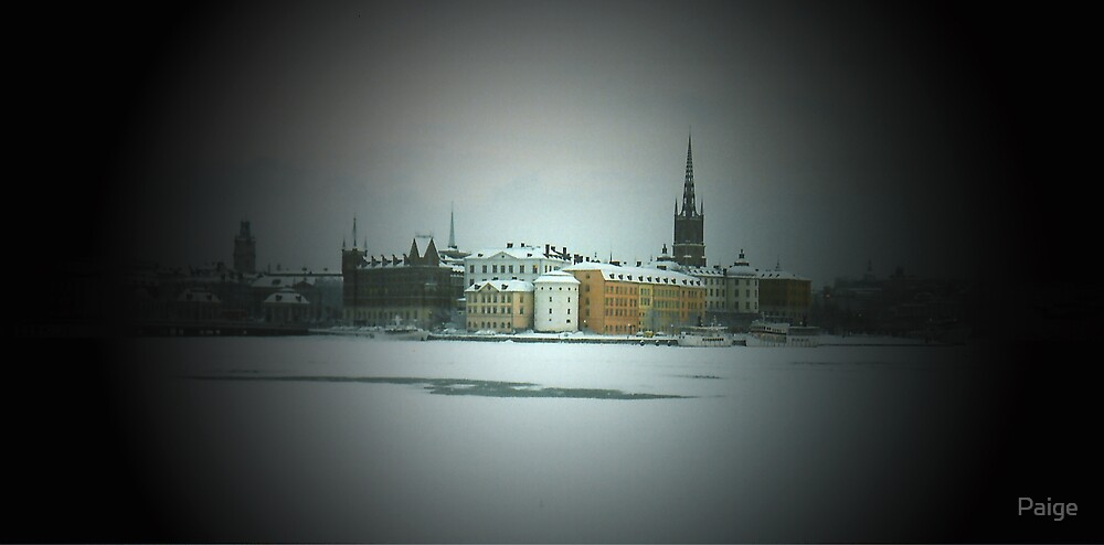 Stockholm In Winter by Paige