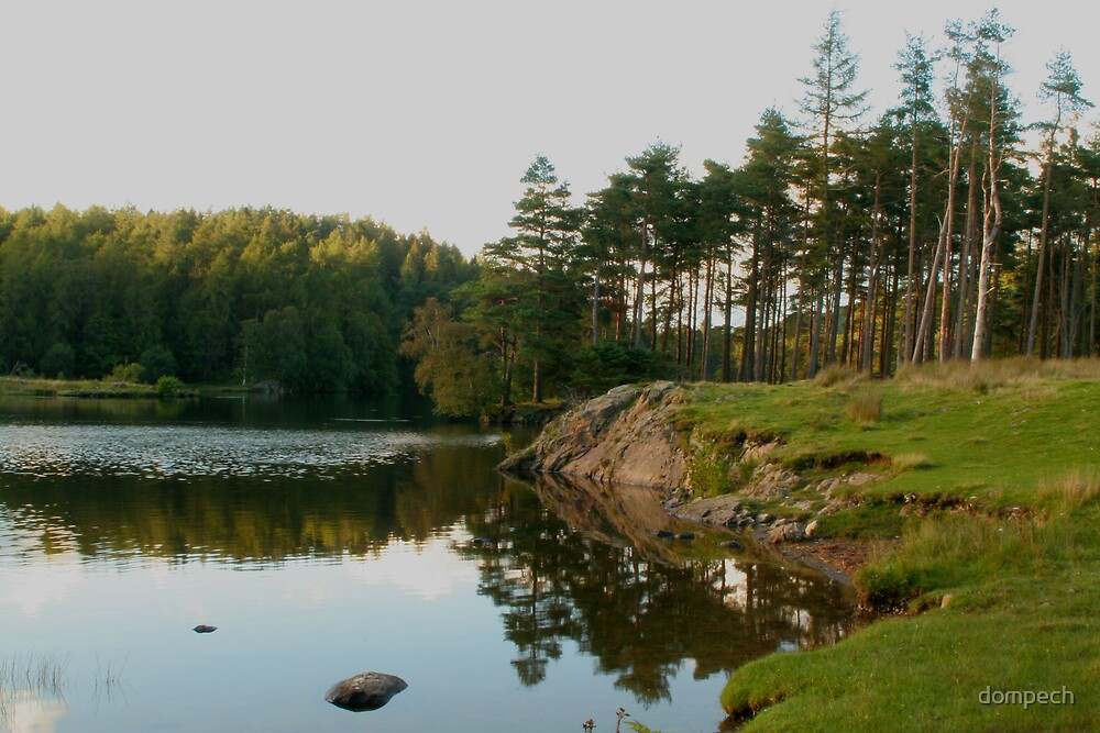 Tarn Hows lake in Lake District England by dompech