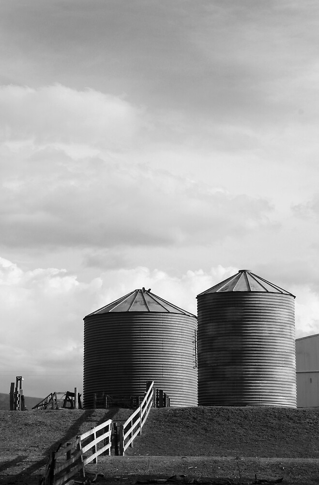 Country Silos by Gavan  Mitchell